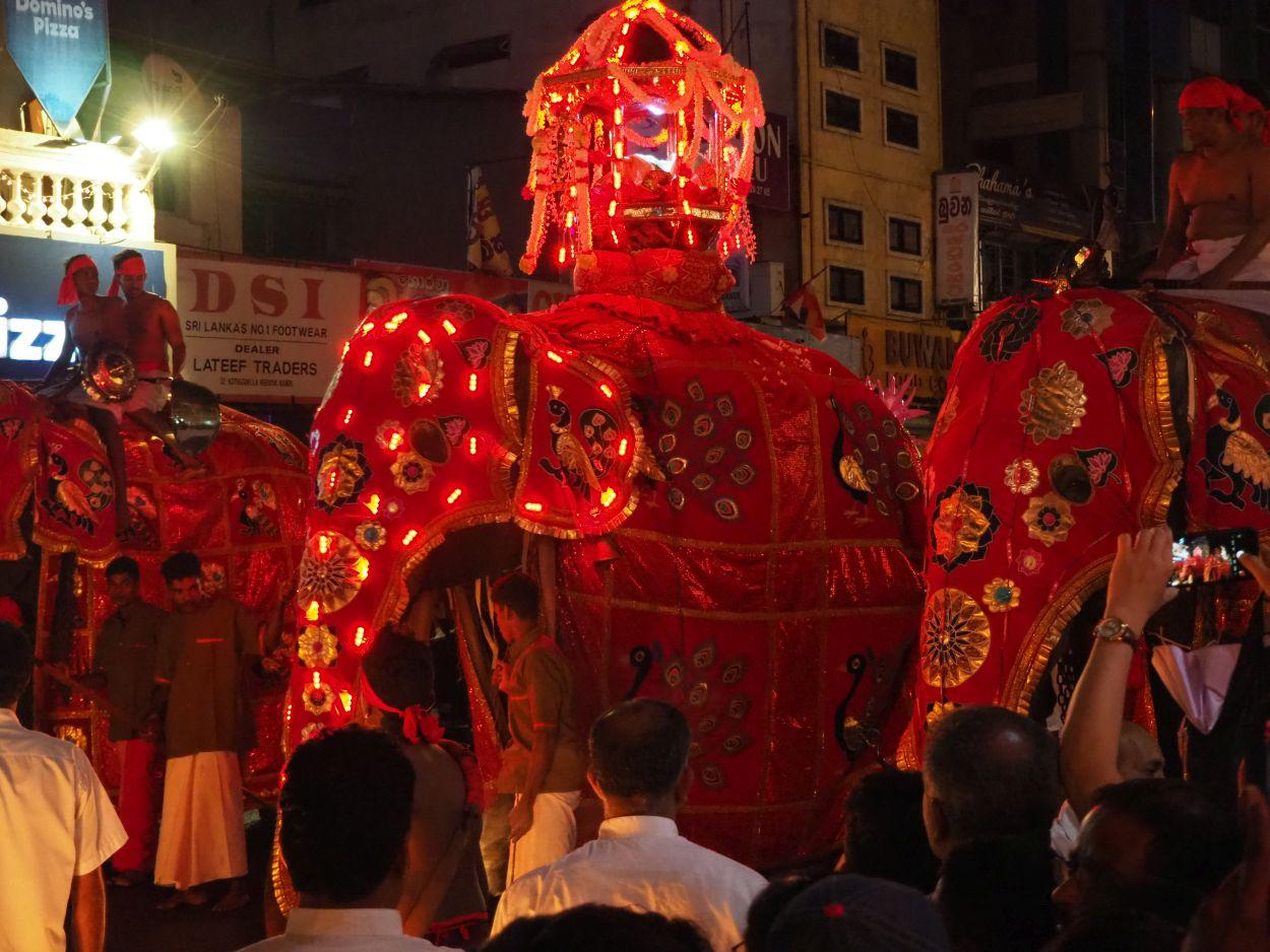 Buddha-Festumzug in Kandy / Sri Lanka