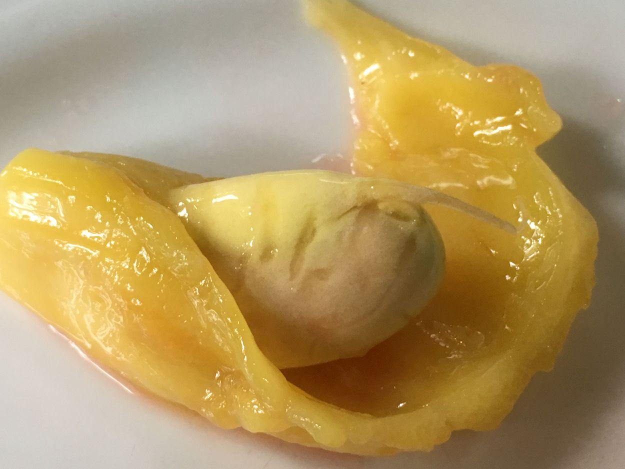 Jack-Frucht als Nachspeise
