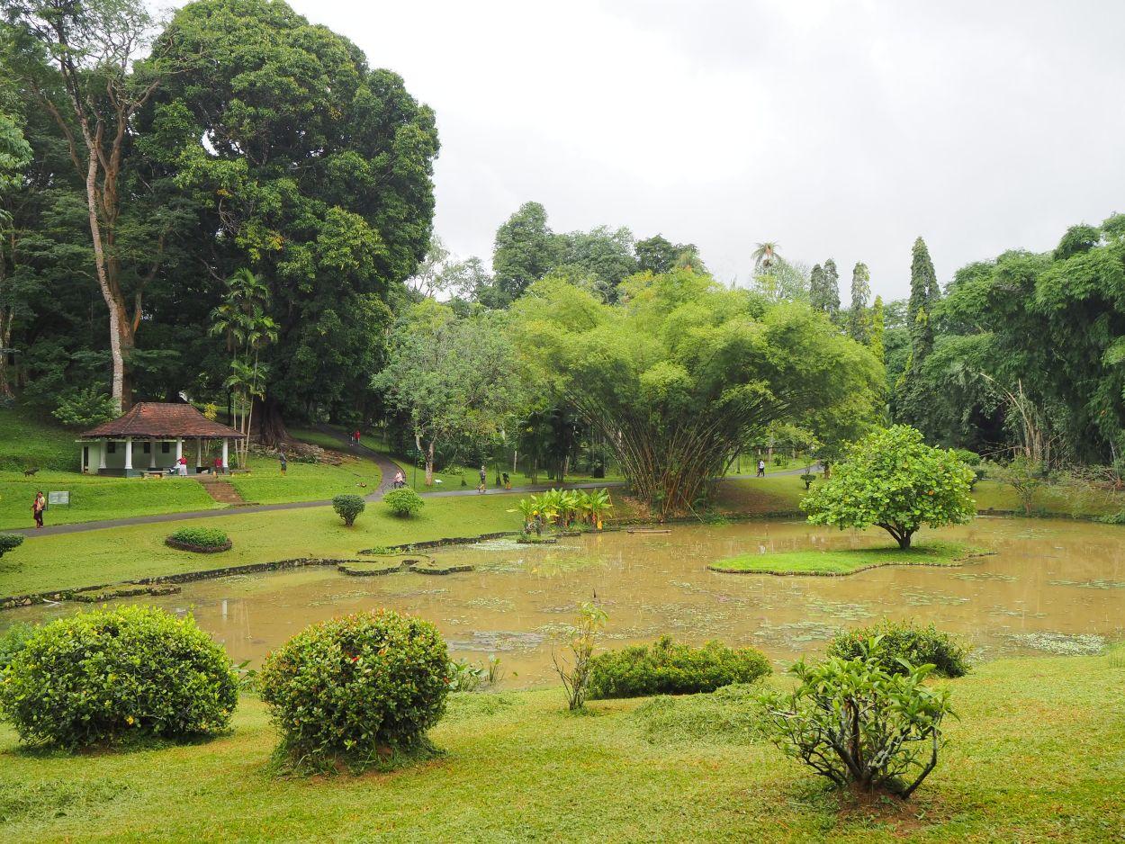 Botanischer Garten in Kandy / Sri Lanka