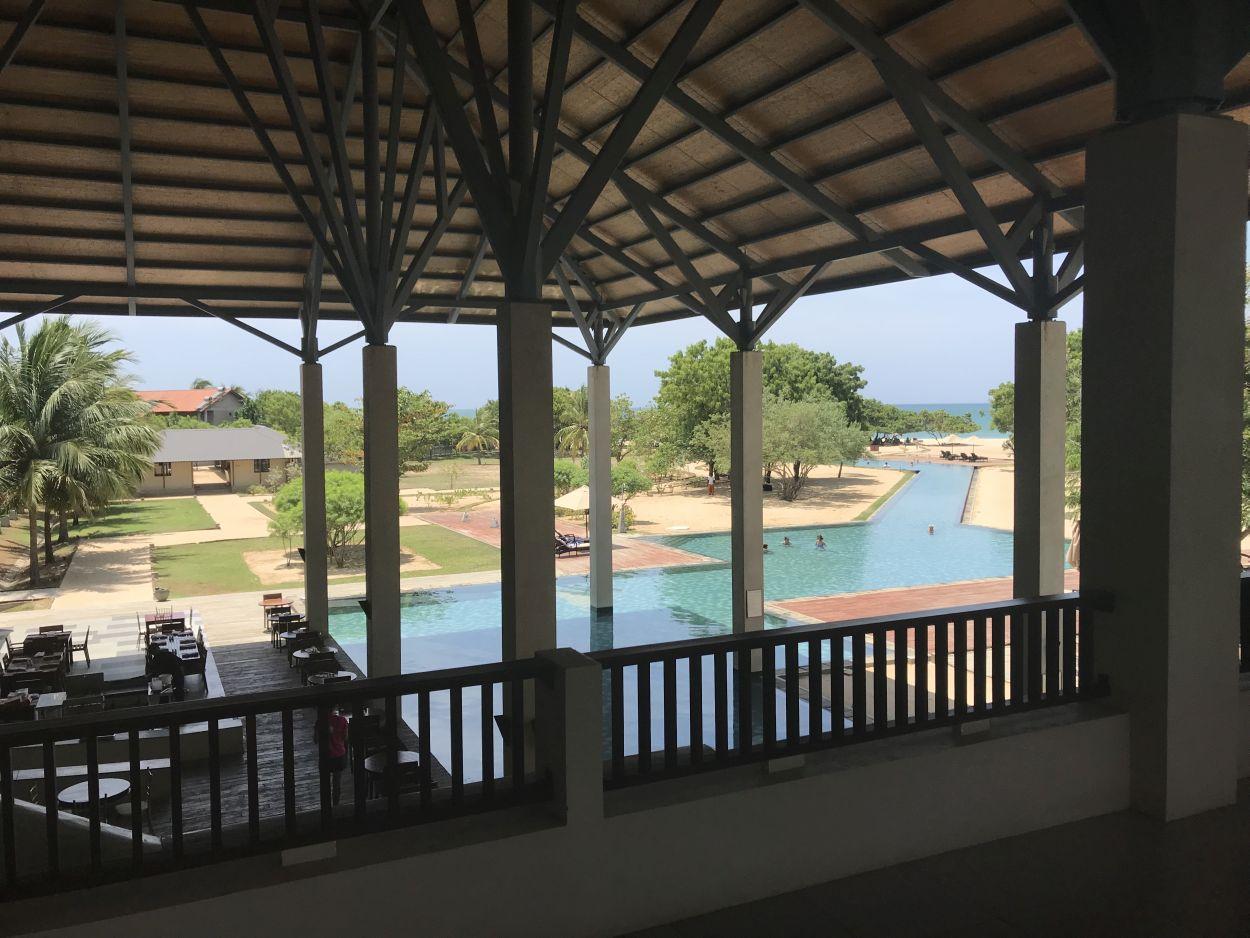 Blick auf den Pool / Sri Lanka