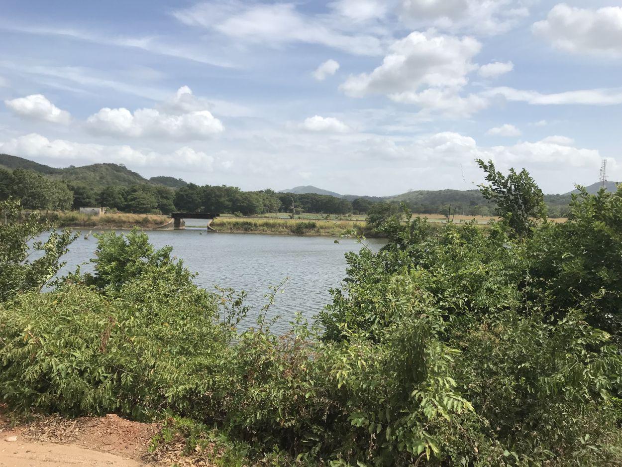 Joggen am See in Sri Lanka