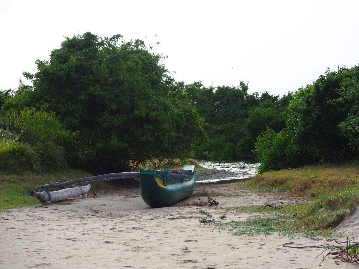 Fischerboot am Strand vom Sri Lanka