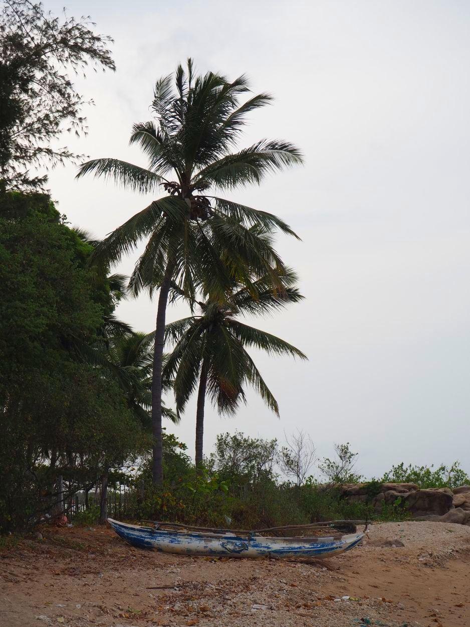 Letzter Strandtag in Sri Lanka