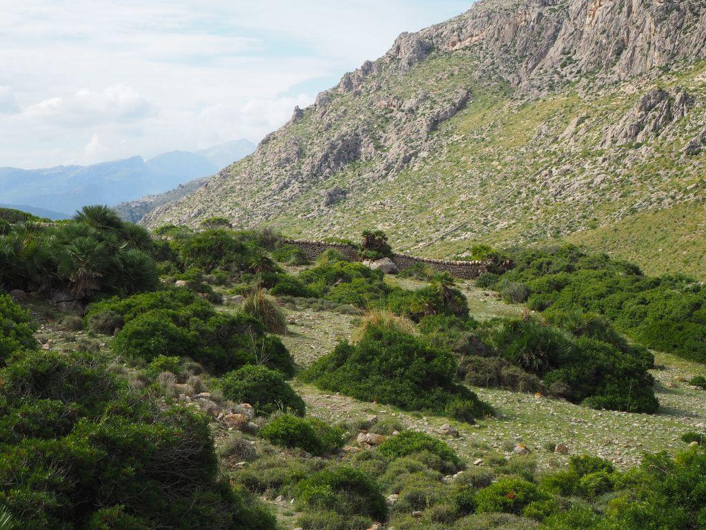 Schöne Wanderungen sind auf Mallorca möglich