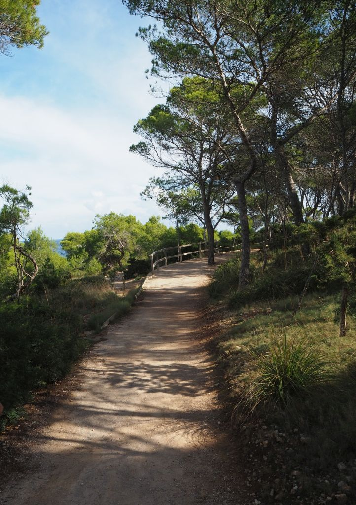Schattiger Wanderweg an der Cala Mondrago