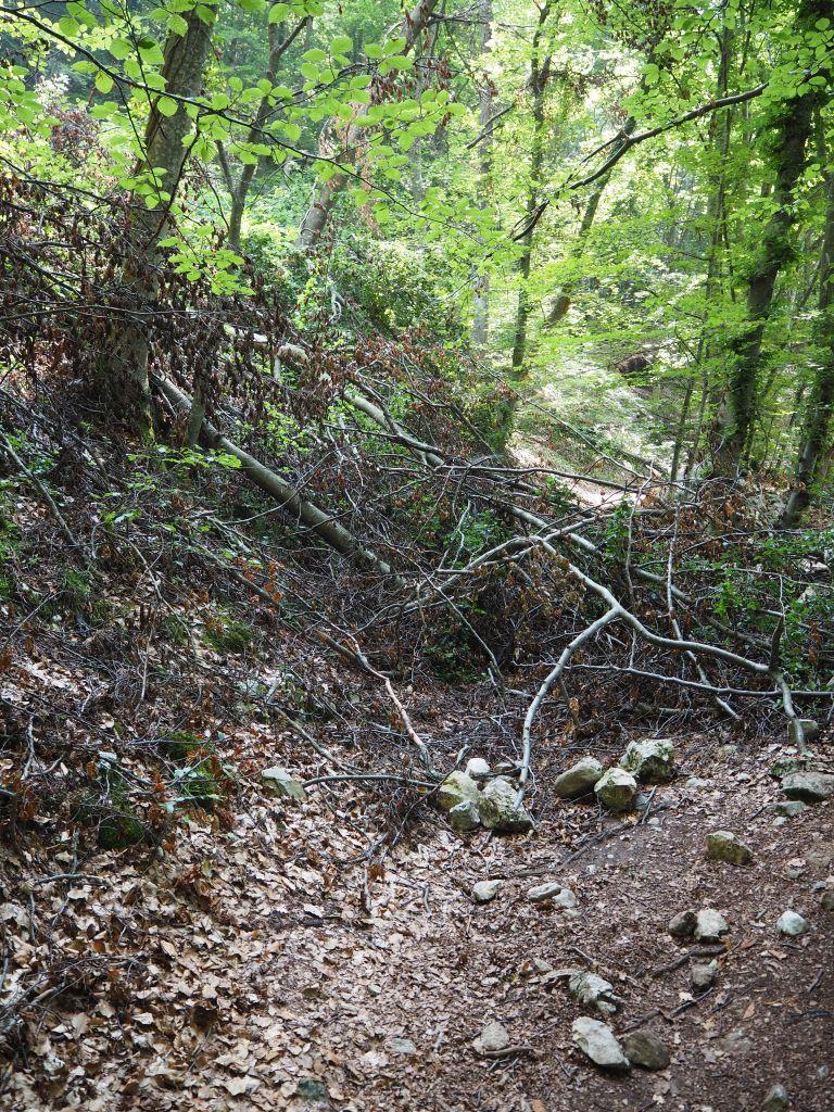 Wanderung zum Bergdorf Canale di Tenno