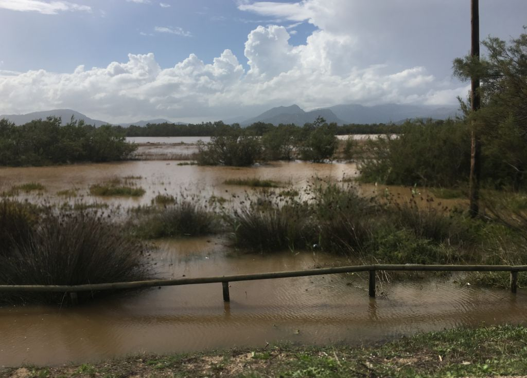 Überschwemmung auf Mallorca