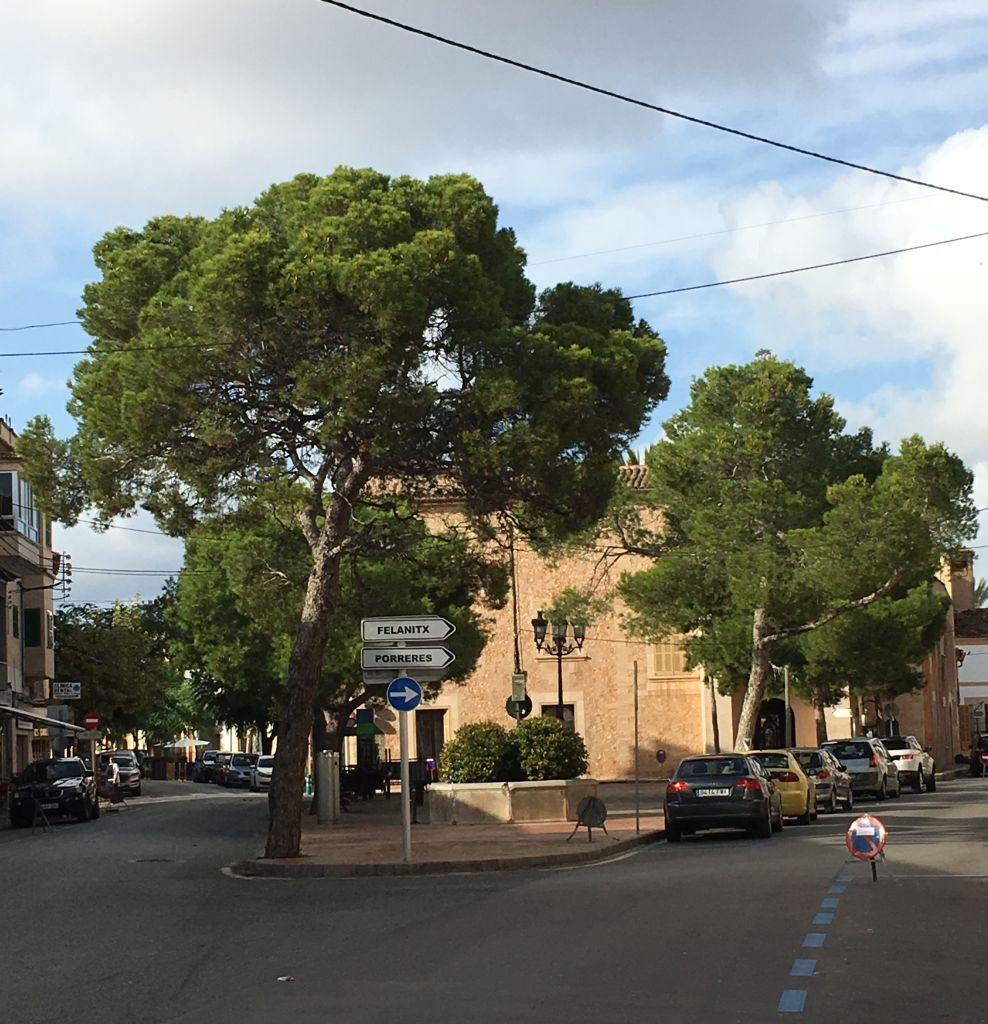 Campos auf Mallorca