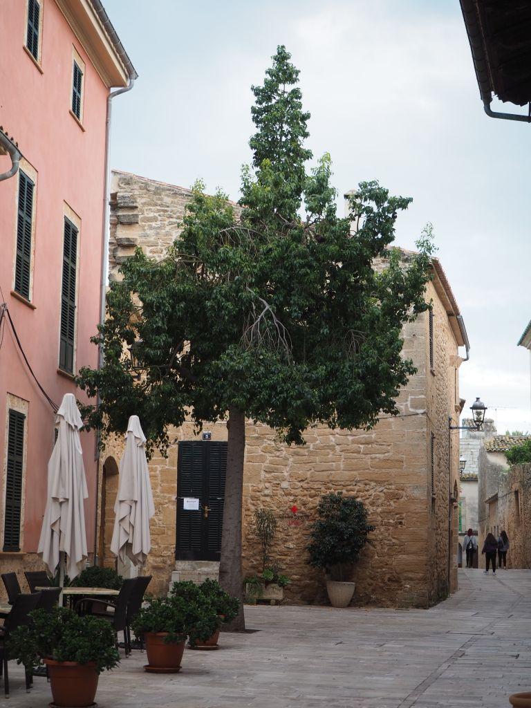 Altstadt von Alcudia