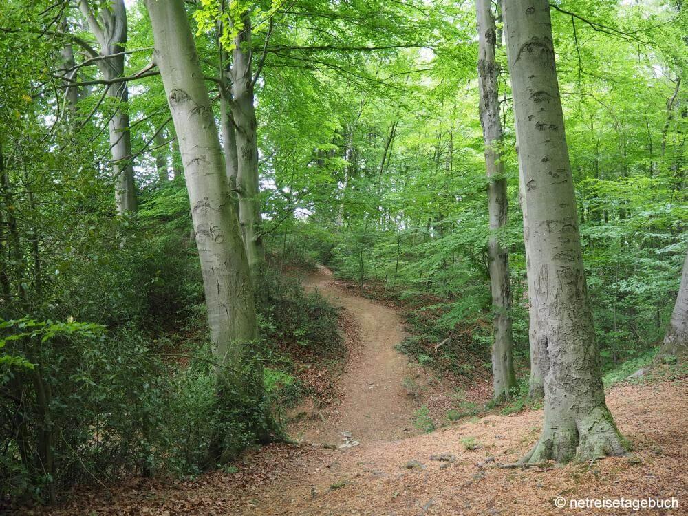 Wanderweg Grube 7