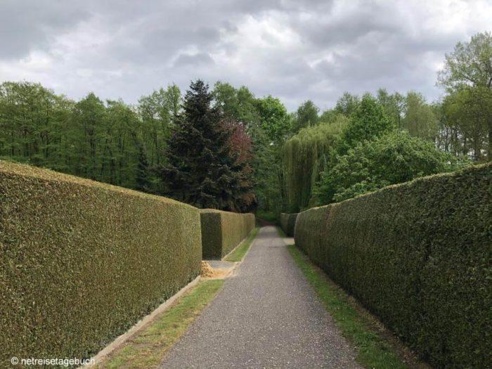 Wanderroute zwischen zwei Hecken