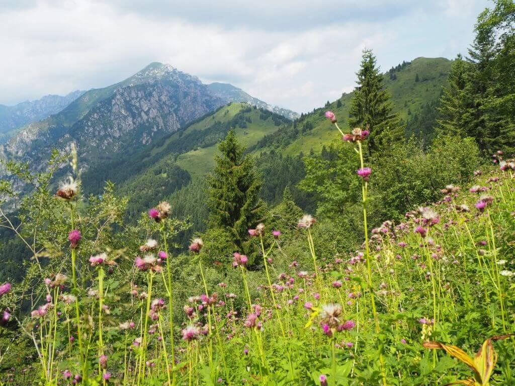 Wanderweg ums Refugium Nino Pernici