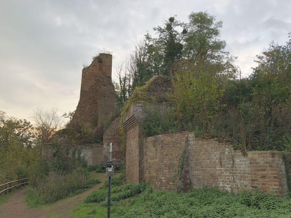 Burgruine Kaster
