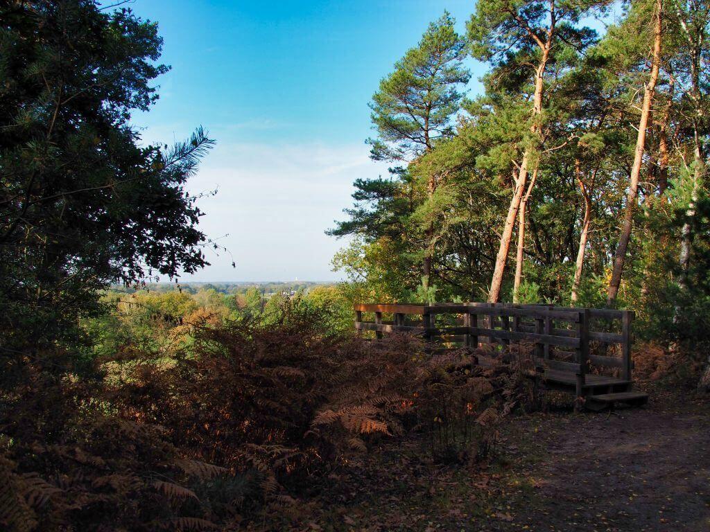 Naturschutzgebiet Schlucht