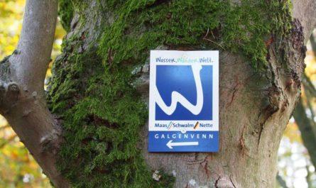 Premium-Wanderweg Galgenvenn