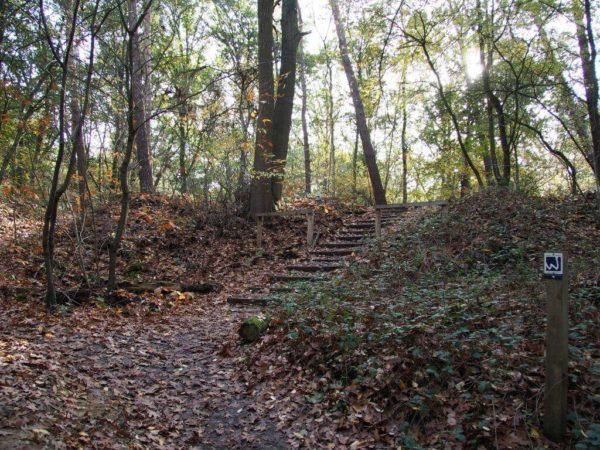 Treppen im Galgenvenn
