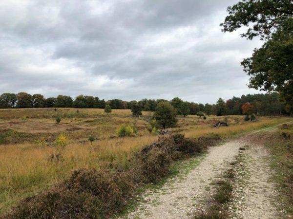 Naturpark De Meinweg
