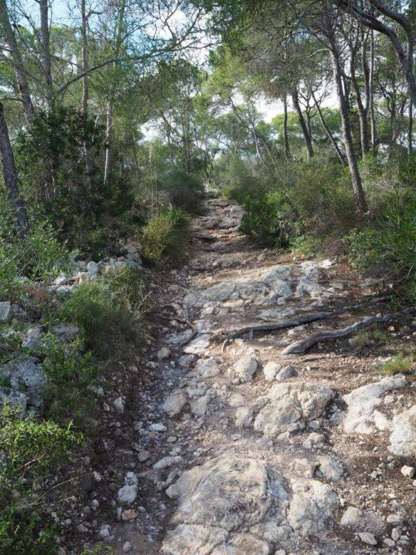 Wanderweg zur Cala Mondrago