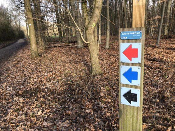 Wandern im Bungtwald