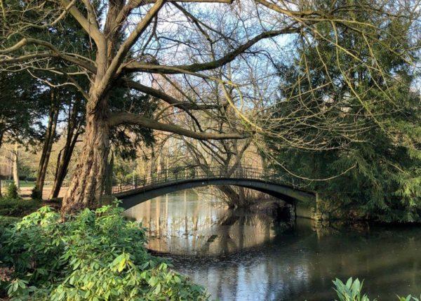Vogelbrücke im Volksgarten