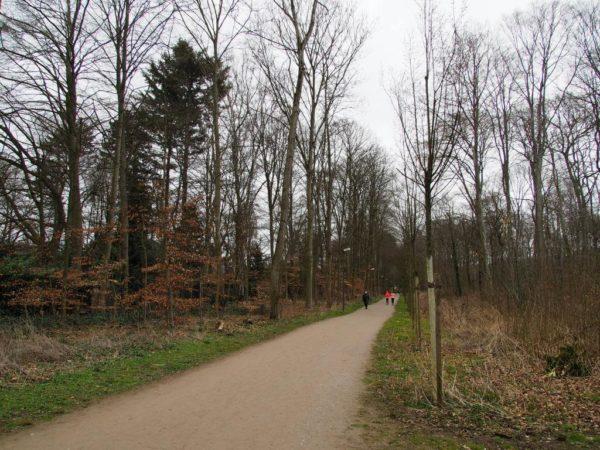 Ringallee Wittringen